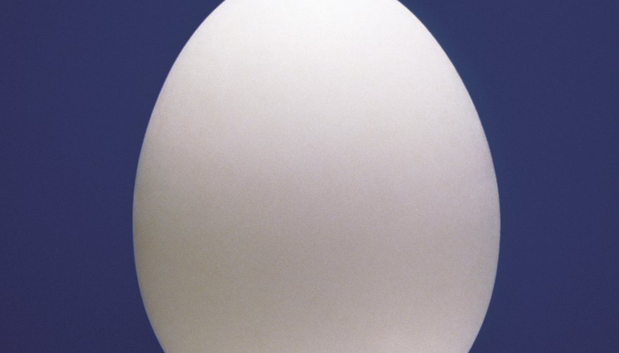 The hard outer shell of an egg can be dissolved by letting it sit in vinegar.