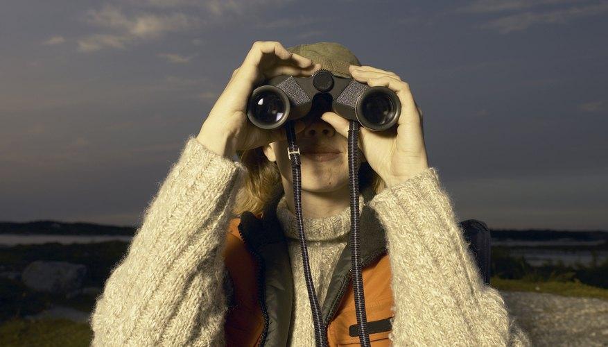 La visión nocturna puede ser mejorada por la dieta y la técnica.