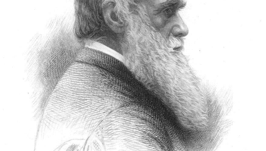 La teoría de la evolución de Charles Darwin se desrama de su libro