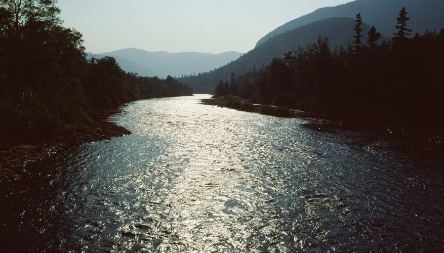 Nitrates from nearby soil leach into rivers after deforestation occurs.