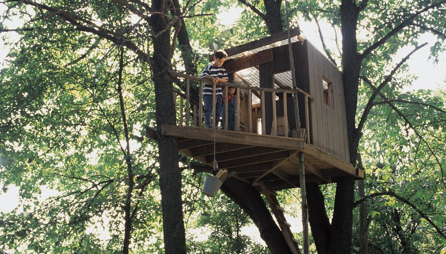 Traditional treehouse design uses tree limbs as support.