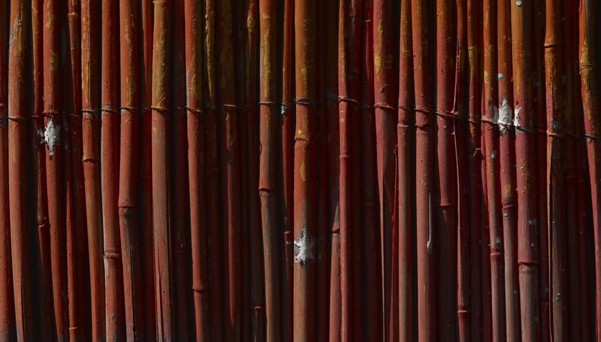 Bamboo fencing is commonly sold in as wired-together panels, either 4 or 6 feet tall.