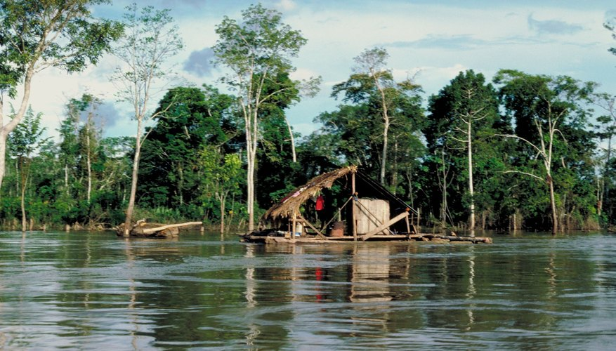Isolated settlements are scattered in the Amazon Rainforest.