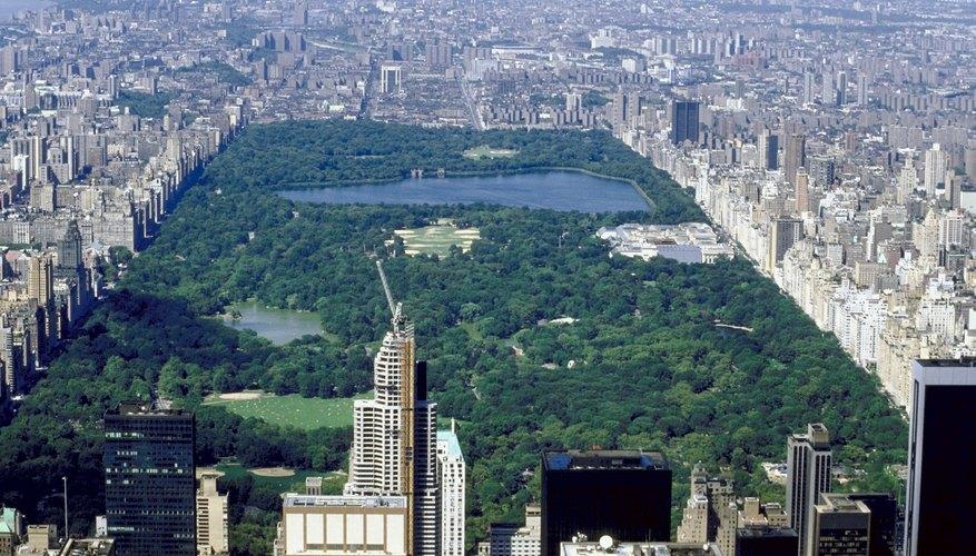 Central Park es un punto destacado en la ciudad de Nueva York.