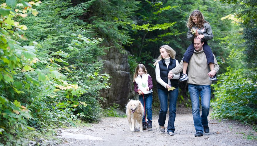 Las familias pueden participar en una variedad de actividades alrededor de Stuarts Draft.