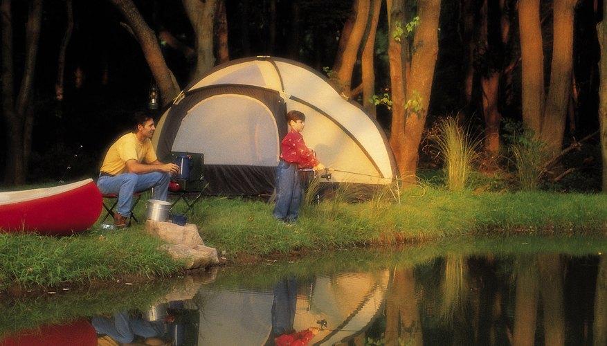 Lleva a tus hijos a acampar y pasear por el río Delaware.
