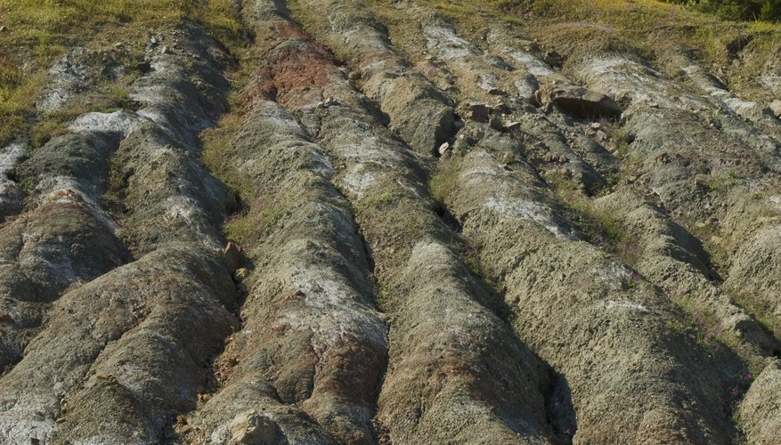 Soil erosion compromises the integrity of the soil for farming and natural vegetation.