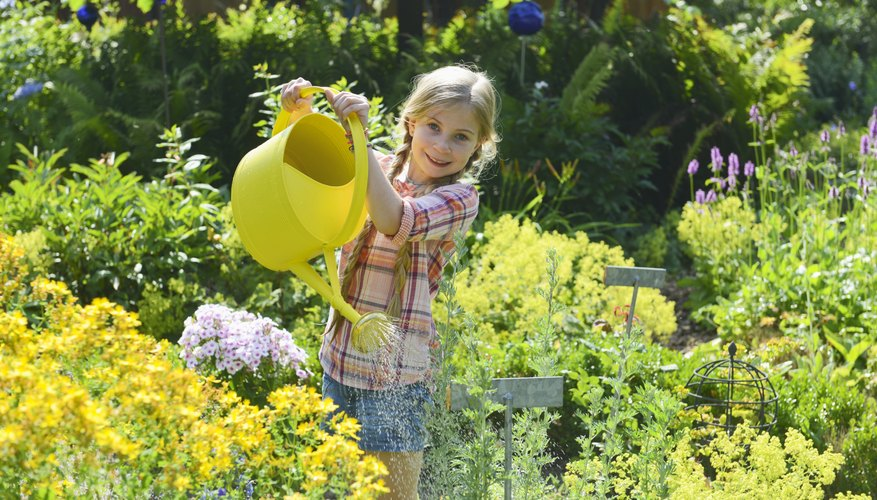 A young girl is watering flowers.