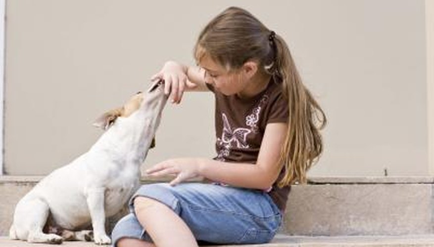 Pet sitting is another way teens earn cash in the summer months.