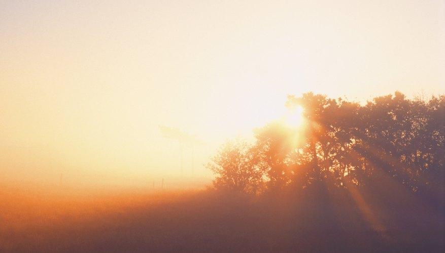 Una reacción química que ocurre con luz solar abundante puede producir un resultado diferente que una que ocurre en la oscuridad.