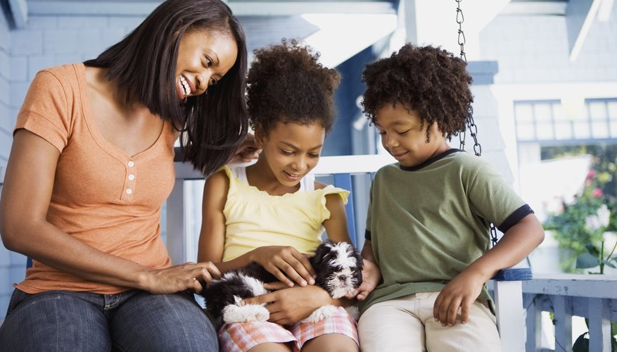 Family with Shih Tzu puppy.