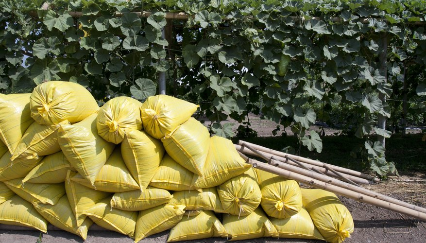 Bags of organic fertilizer on the ground by plants.
