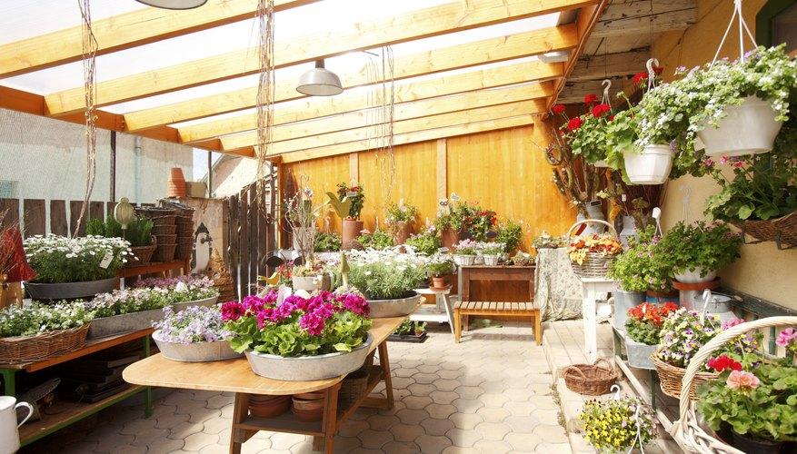 Flower Shop Interior