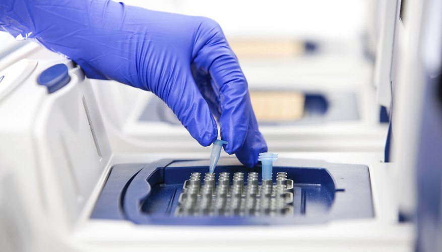 Close-up of a scientist using a PCR cycler in a lab.