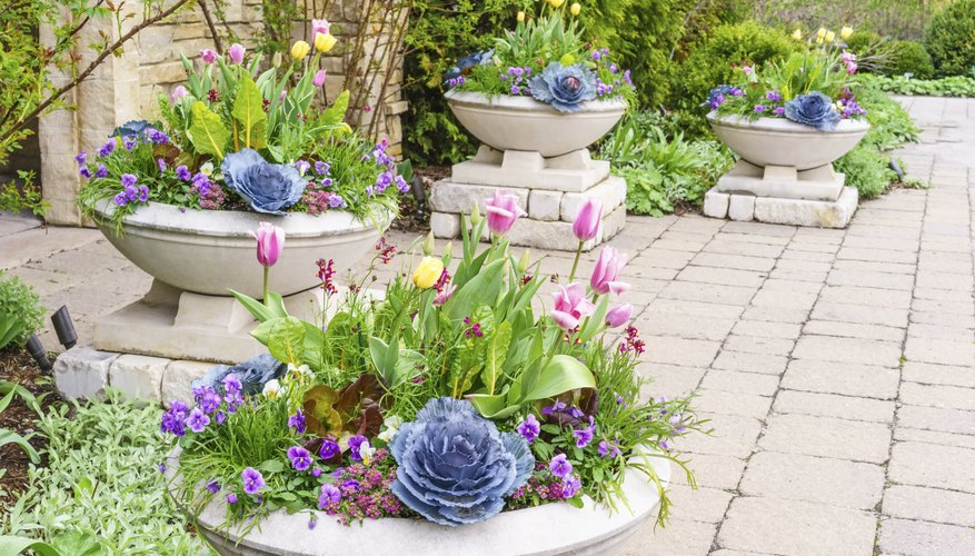 Use identically planted urns to define a garden area.