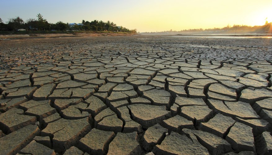 Dry, barren landscape with cracked earth