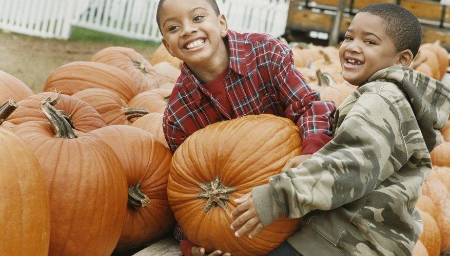 Pumpkin-centered activities can make math class a memorable experience.