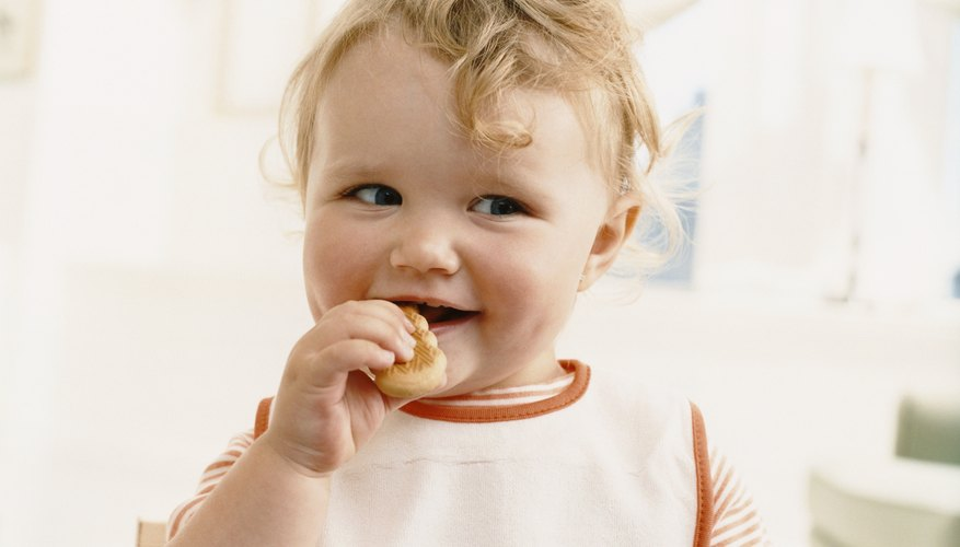 One year old eating cracker