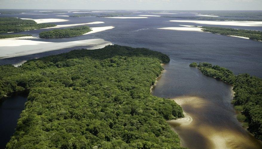 Las llanuras fluviales son zonas planas cerca de ríos.