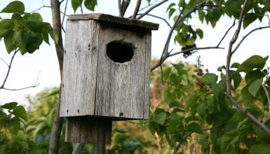 Attach your birdhouse to a tree or wooden pole.