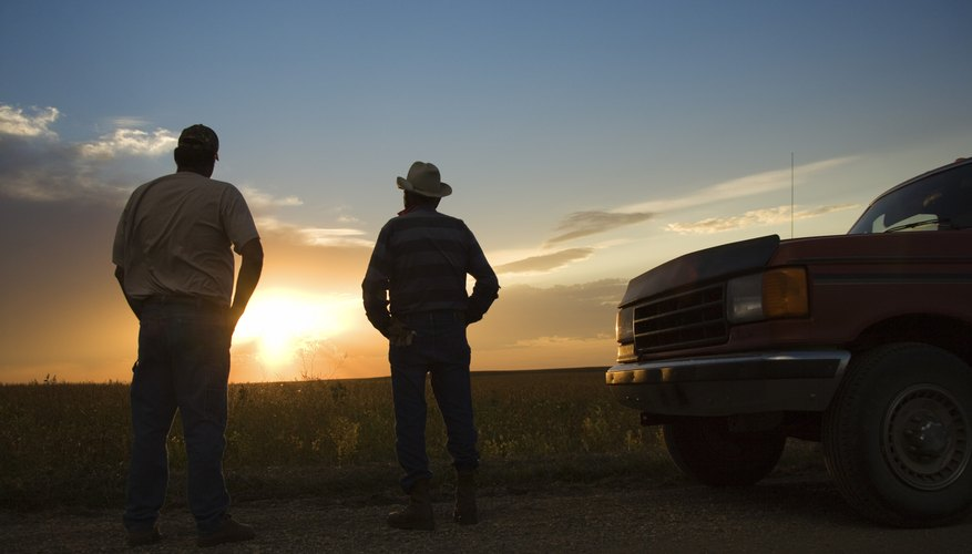 Men watching sunset