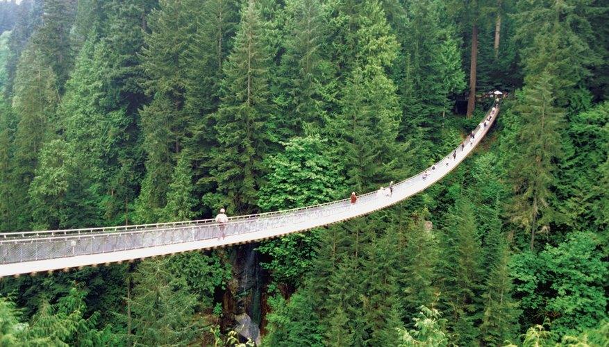 Suspension Bridge In Vancouver Washington