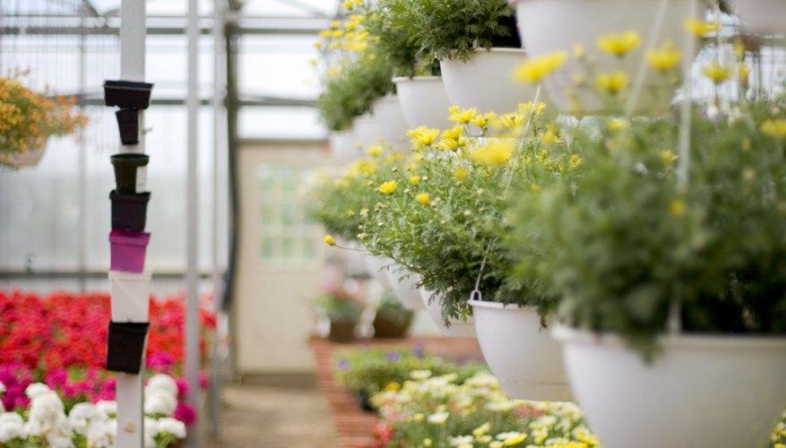 Un vivero de plantas tendrá herramientas de jardinería, depósitos de almacenamiento o cobertizos para herramientas y productos químicos y equipos de oficina.
