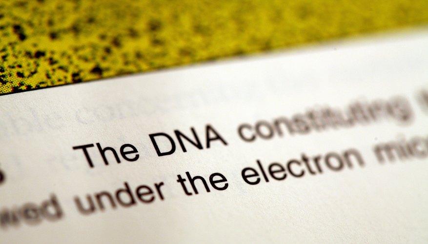 Clonación genética y análisis de ADN.
