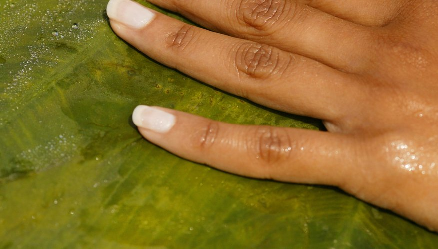Nail Salon Owner\'s Salary | Bizfluent