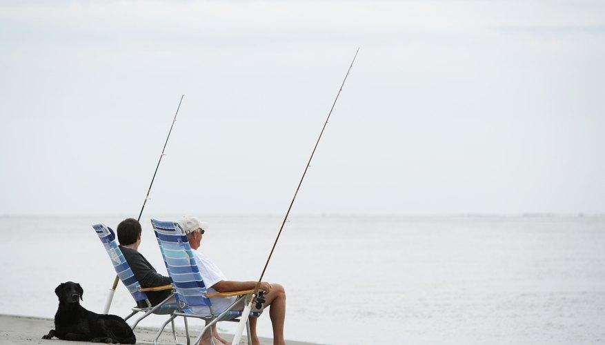 Carolina del Sur ofrece la oportunidad de realizar actividades adecuadas para los adultos mayores.