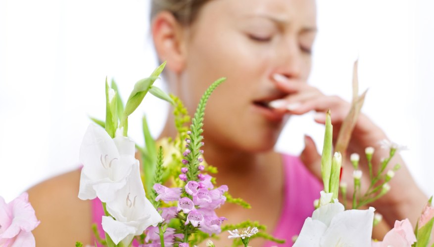 People allergic to pollen may find some relief during certain weather conditions.