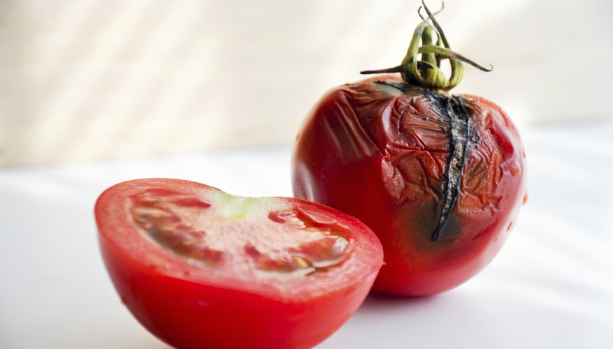 A tomato with black sunken patches compared to a fresh cut tomato.