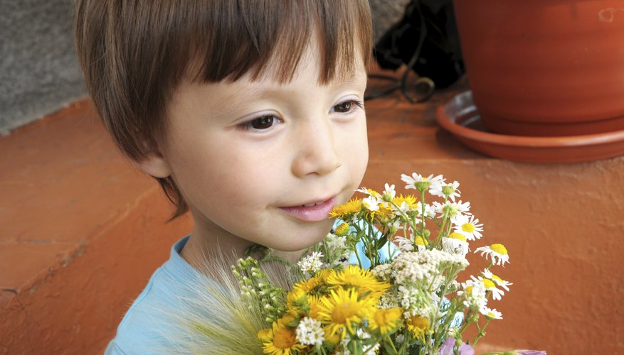 A boy holds a bouquet of hand-picked wildflowers.