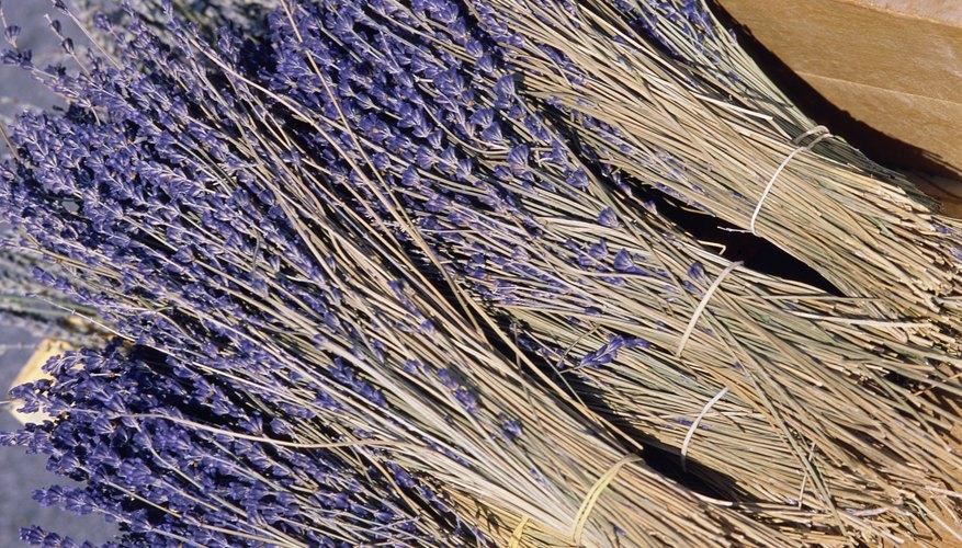 Puede que te gusten las hojas de secadoras que huelen a lavanda u otros compuestos aromáticos.