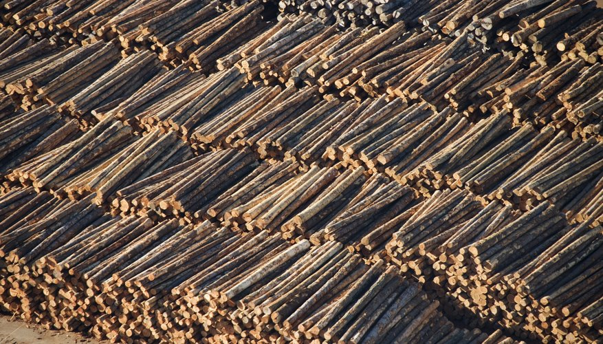 Logging can significantly deplete an ecosystem.