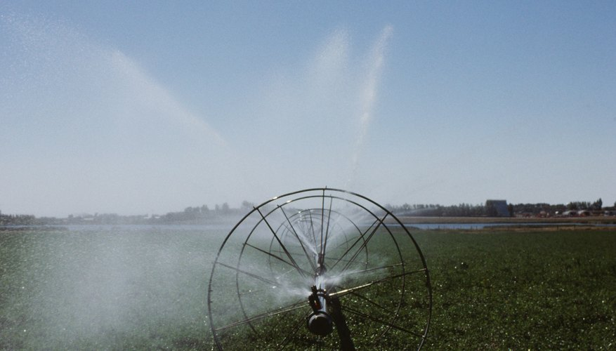 Sprinkler wheels are common in hay fields.