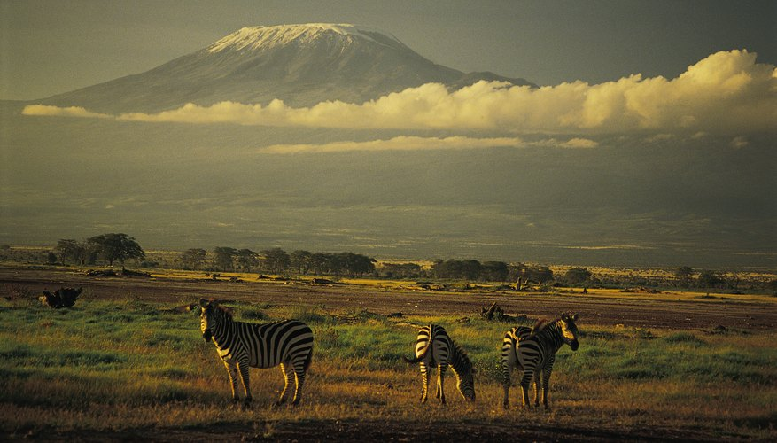 Mt. Kilimanjaro lies within the East African Rift zone.