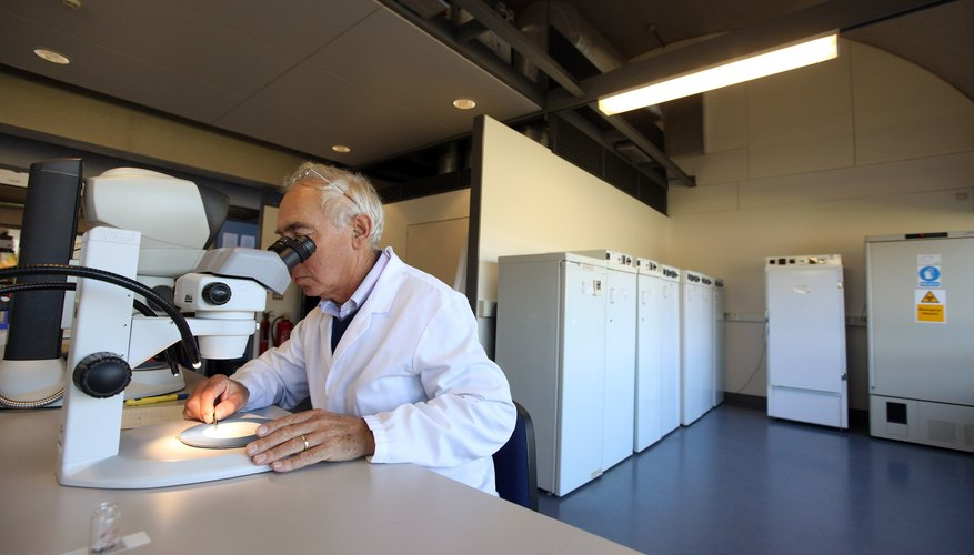 A scientist viewing seeds through a microscope at a lab table.