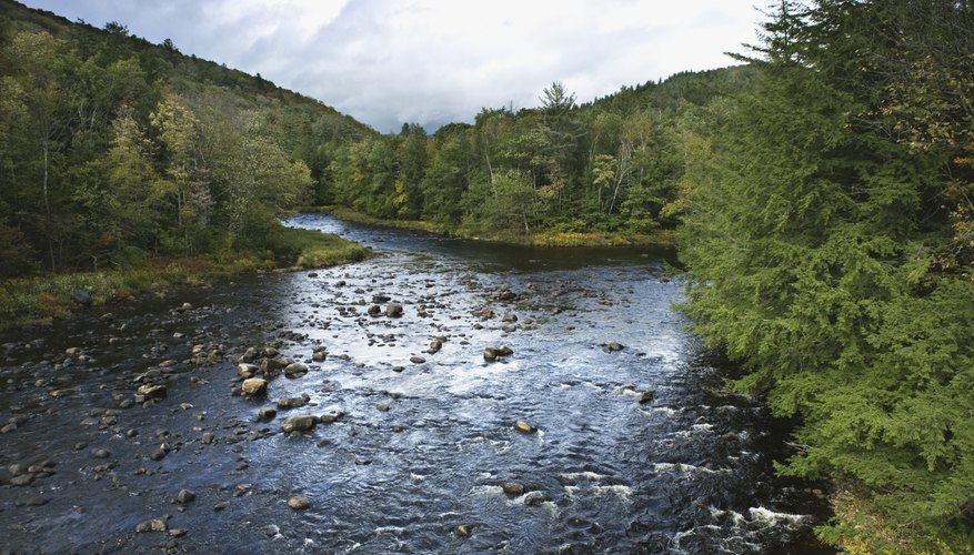 A river flows through the Temperate Adirondack State Park in New York.
