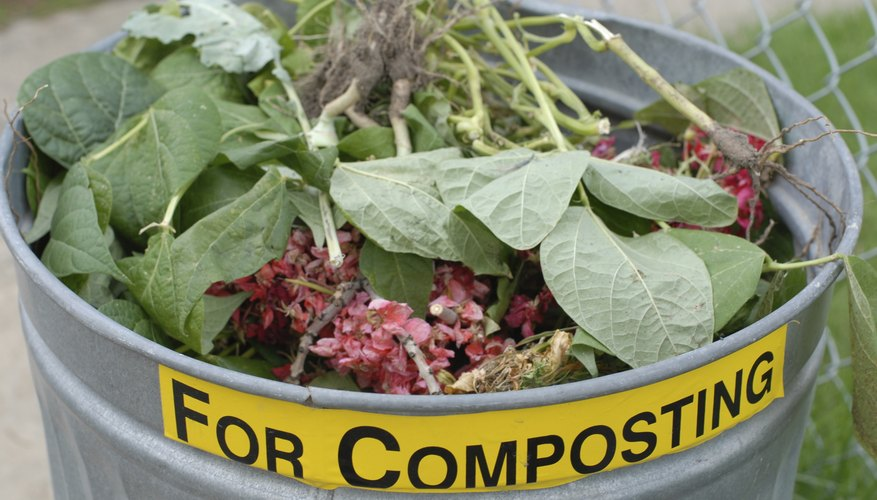 A close-up of a composting bin.