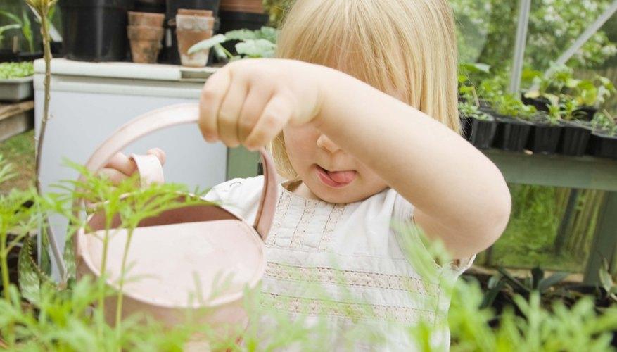 El dióxido de carbono se puede utilizar para enriquecer las condiciones de cultivo de las plantas.