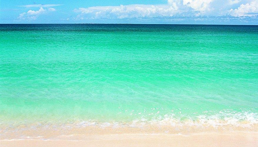 Una playa arenosa.