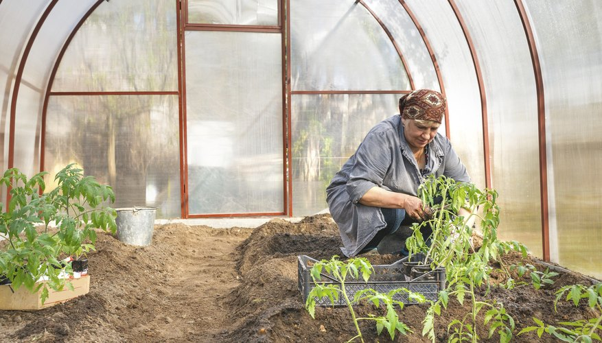 A hoop house extends your growing season.