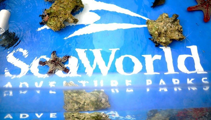 Consigue entradas con descuento para SeaWorld en California.