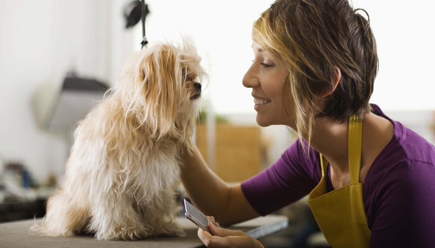 Self employed pet groomers may not have benefits.