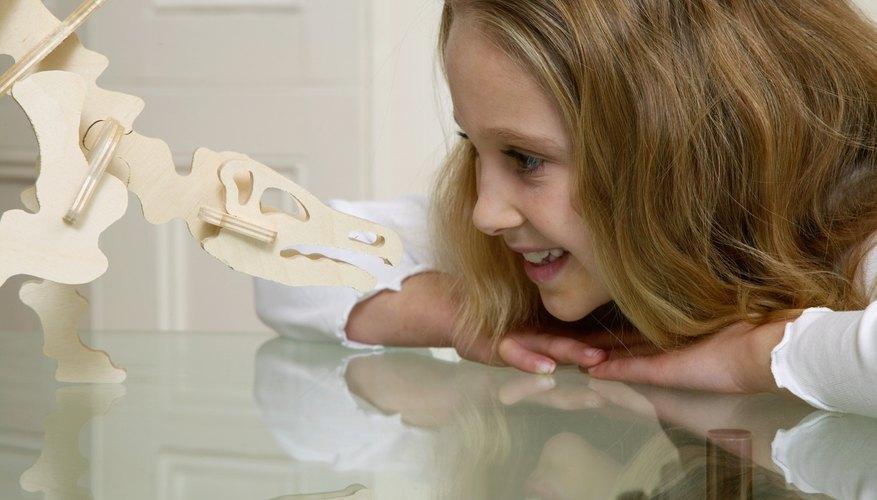 Los niños amantes de los dinosaurios pueden apreciar un viaje a un campamento de paleontología.