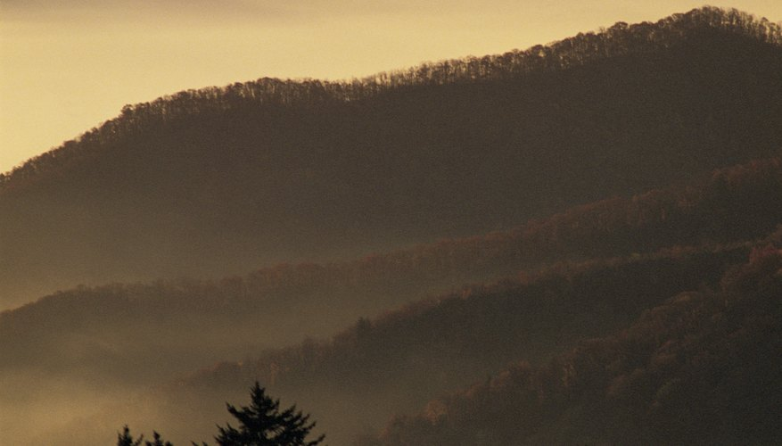 Sevierville, located in the Smokies, offers an array of fun, family activities.