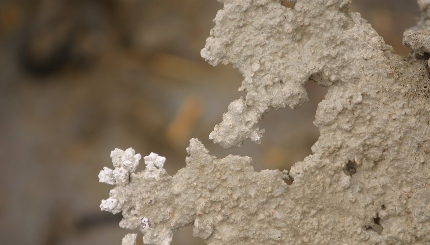 Salt crystals form when a saline solution evaporates and leaves the salt behind.
