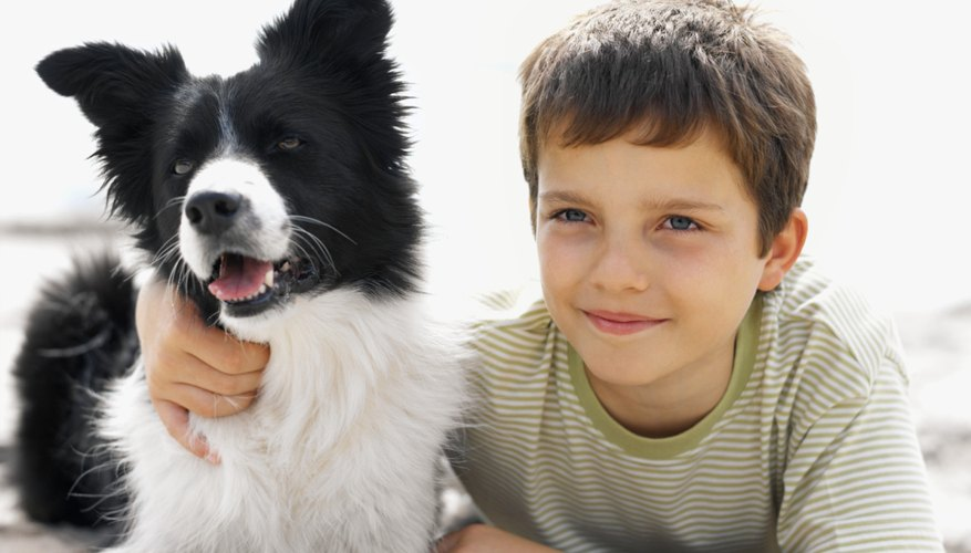 Children need to learn how to care for animals.