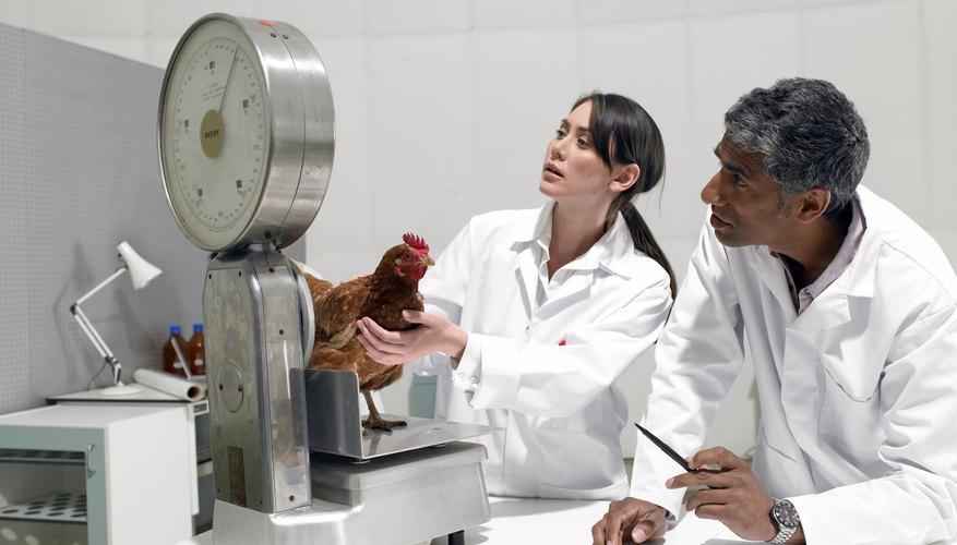 El método científico es un proceso destinado a explicar fenómenos, establecer relaciones entre los hechos y enunciar leyes.